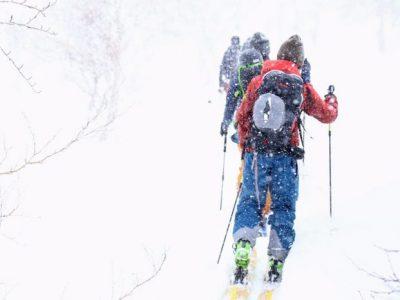 パドルクラブBCスキーレビュー今季のBCブーツは激戦区❗️あなたはどのブーツ⁉️
