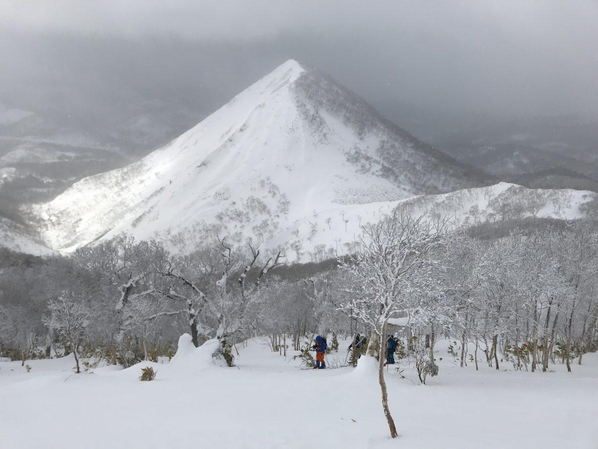 パドルスタッフ冬山レポート道南のアラスカ斜面調査類