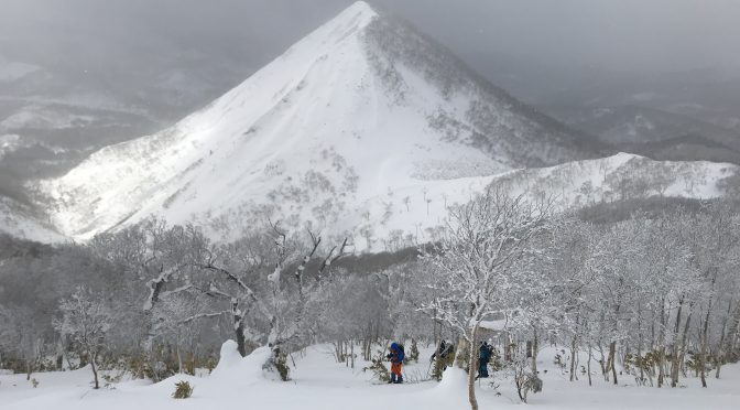 パドルスタッフ冬山レポート🏔道南のアラスカ斜面調査🧐