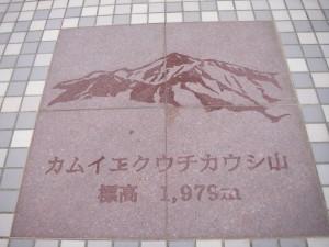 IMGP1331